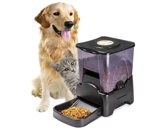 dry display pet automatic dish dog electric food for programmable feeder dispenser cat p zgsz lcd