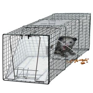 OxGord Humane Small Animal Trap Steel Cage for Live Rodent Control