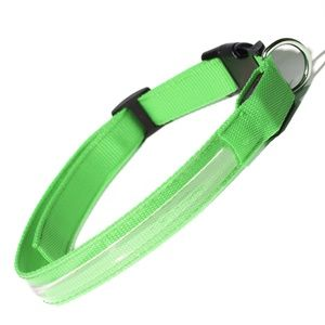 Paws & Pals LED Pet Neck Collar Flashing Color Light Up Night Safety Strap - Green - Large